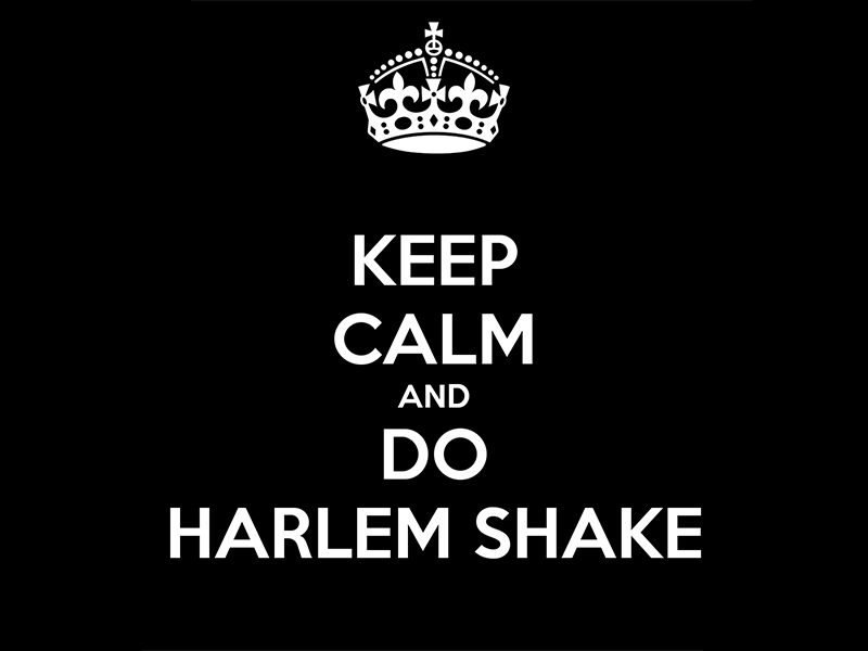 DO THE HARLEM SHAKE!
